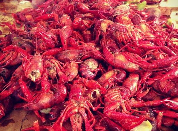 """Los """"crawfish"""" o cangrejos de río hervidos: tradición en la zona de los pantanos. Foto: Zacearly"""